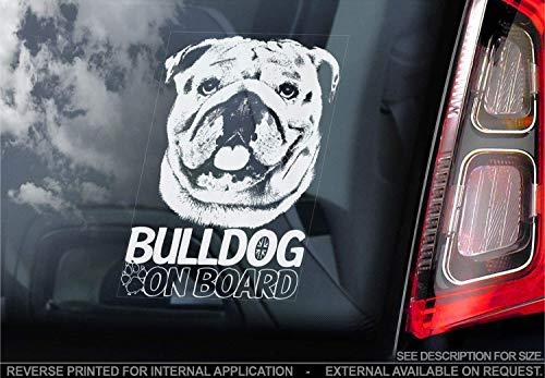 Englische Bulldogge - Autoaufkleber - Hund Schild Fenster, Stoßstange Aufkleber Geschenk - V002 - Weiß/Klar - Interne Rückwärtsgang Aufdruck, 150x100mm