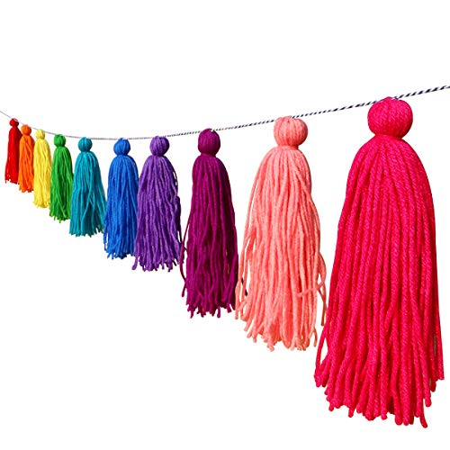 Big Size Tassel Garland H6.3in Polyester Yarn Colorful Pom Pom Tassel Banner Decorative Wall Hanging for Home Decoration Wedding Birthday Baby Shower Party Supplies (Rainbow)