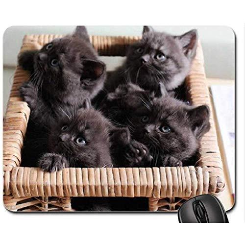 Chocolade Box muismat, muismat (katten muismat)