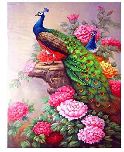 Pintura De Diamante Personalizada 5D Decoración De La Pared Del Hogar Kit De Pintura De Regalo Punto Palo Descompresión Juguete,Peonía Pavo Real(70x90cm)