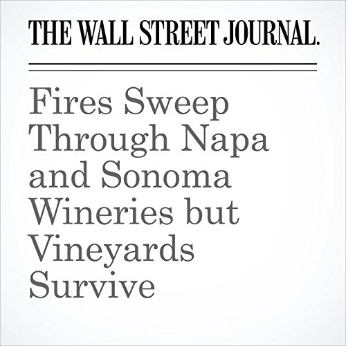 Fires Sweep Through Napa and Sonoma Wineries but Vineyards Survive copertina