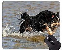 ジャーマン・シェパード・ドッグのマウスパッド、ゲームやオフィス用の水で快適なマウスマットのコリーで印刷