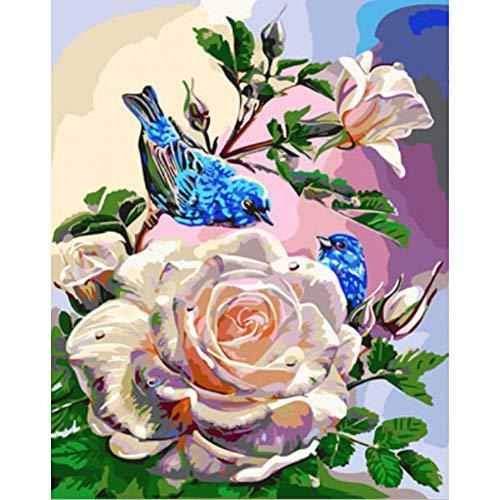 GKJRKGVF Olieverf DIY Schilderen Door Getallen Kleurplaten Door Getallen Vogels en Bloem Home Decoratie 40 * 50cm