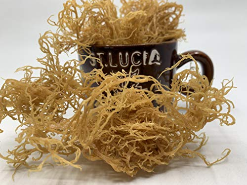 St Lucia Ocean Grown Dried Sea Moss (1/2 lb)