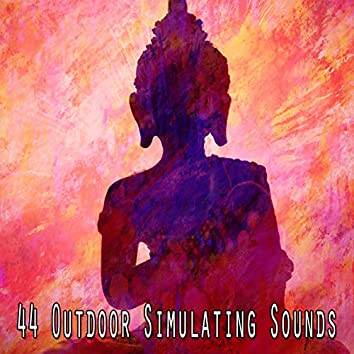 44 Outdoor Simulating Sounds