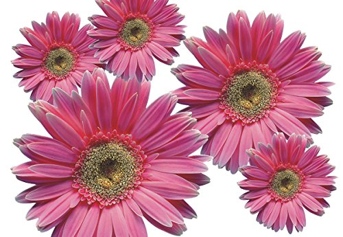 Autoaufkleber, Blumendesign: Flower Set 03-Mini-36 Stück