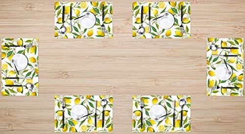 Britimes Placemats Set of 6 Washable Table Place Mats Decoration Heat Resistant Eat Mat for Kitchen Dining Decor Floral Lemon 12 X 18 inches
