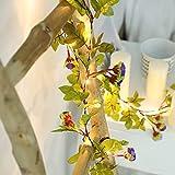 Lixada Cadena de luz de Vid de Flores púrpuras Artificiales 2,2 M 25 Cuentas de lámpara decoración de habitación Blanca cálida Brillante Constante