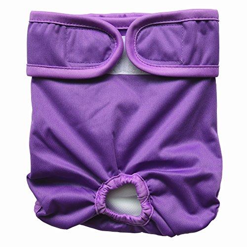 Hibaby Couches lavables réutilisables pour chien femelle (taille M 35,6 - 50,8 cm) Violet