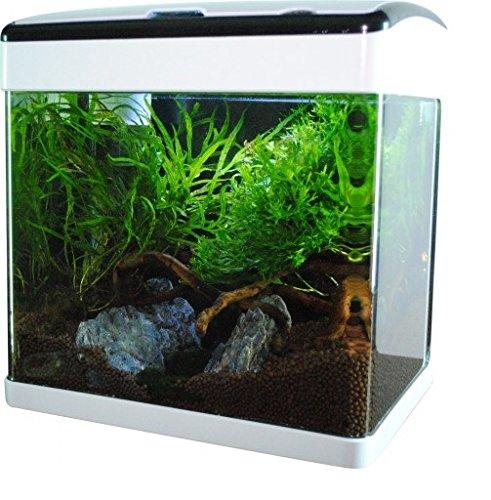 Nano-aquarium 32 l