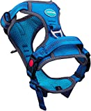 ThinkPet No Pull Breathable Sport Dog Harness - Reflective Padded Oxford Nylon Safety Adjustable Easy on and off Vest, Back/Front Clip Handle Outdoor and Training Small Medium Dogs(Medium Blue)