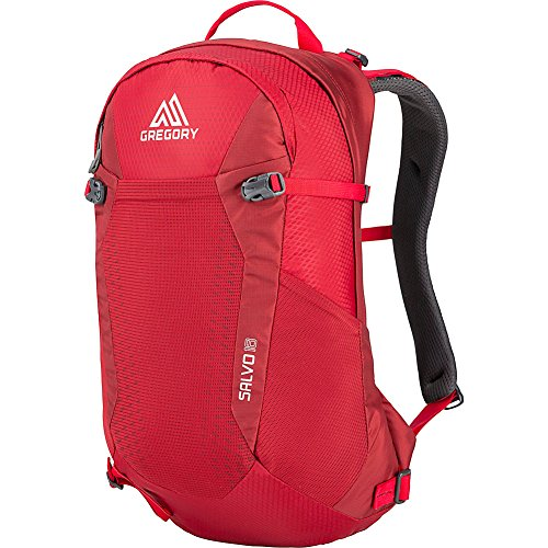 Gregory Mountain Products Men's Salvo 18 Liter Backpack, Tango Red, One Size