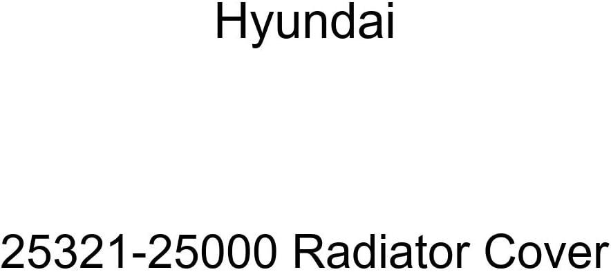 Selling rankings Genuine Hyundai Tulsa Mall 25321-25000 Radiator Cover