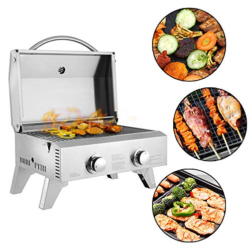 Goujxcy Portable Propane BBQ Gas Grill,Mini Tabletop Stainless Steel 2-Burner Gas Grill 20000 BTU for Outdoor Camping Picnic(Silver) Grills Propane