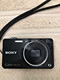 Sony Cyber-shot DSC-WX100 18.2-Megapixel Digital Camera - Black