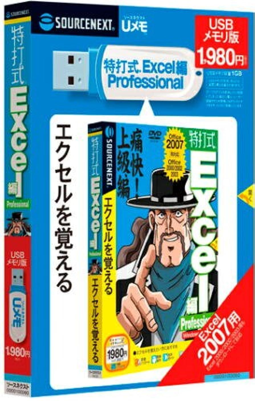 北方乱暴な嵐特打式 Excel編 Professional (Uメモ)