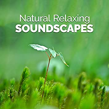 Natural Relaxing Soundscapes