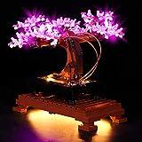 set di led luci per lego bonsai tree 10281, compatibile con lego 10281(non include il modello lego) (b)