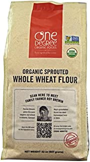 One Degree Organic Foods Veganic Sprouted Whole Wheat Flour -- 32 oz - 2 pc