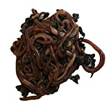 250+ Red Wiggler Earthworms, Organic and Sustainably Raised