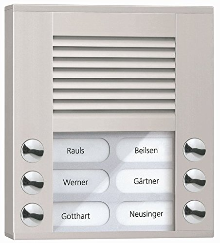 TCS Tür Control Audioaußenstation 2-reihig PES06-EN/04