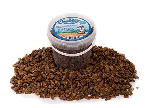 1 litre Chubby séchée SilkWorm Pupae pour oiseaux sauvages Livraison gratuite