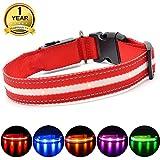 MASBRILL Collar LED Perro, Collar para Perro Luminoso Recargable y Impermeable, 3 Modos de Iluminación led y Tamaño Ajustable para Perros Pequeños Medianos Grandes(Rojo M)