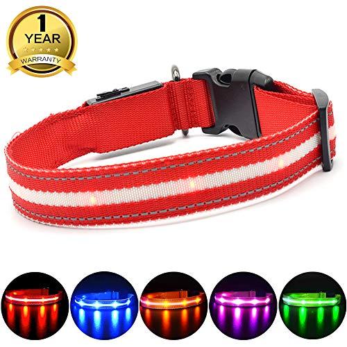 MASBRILL Leuchthalsband für Hunde Aufladbar LED Hundehalsband 100% Wasserdicht Blinkende Lichter mit USB (L, 60cm, Rot)