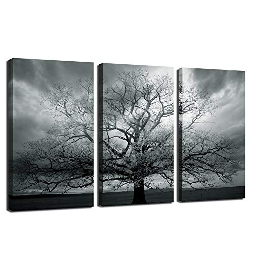 sechars - 3 Piece Tree Canvas Wall Art Winter Tree Landscape Picture Photography Print on Canvas Painting Modern Living Room Bedroom Farmhouse Wall Decor Stretched and Framed Ready to Hang