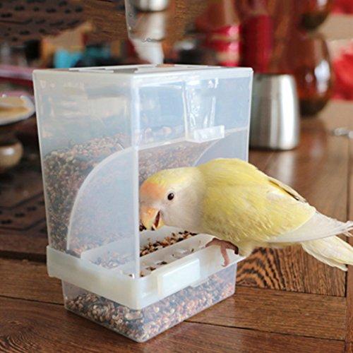 Girasool - Comedero automático de loro, sin desorden, acrílico, para accesorios de jaula para periquitos de cóctel, cenador de platos y semillas de paracaídas (3,94 x 4,72 x 2,95 pulgadas)