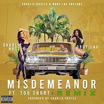 Misdemeanor (Remix)