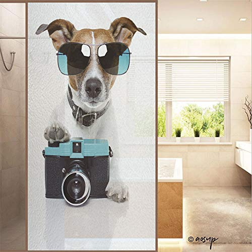 """YOLIYANA Sticker 3D Privacy Glass Film No Glue, Dog Taking Pictures with A Fancy Photo Camera,Multicolor,23.6"""" W x 47.2"""" H for Home & Office No39474"""