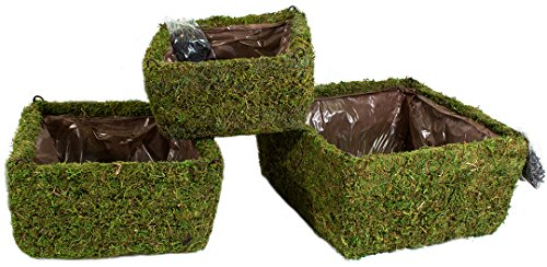 Super Moss (29325) MossWeave Hanging Basket - Square, Fresh Green, Set of 3 (S/M/L)
