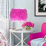 Balkon & Terrasse LED-Nachttischlampe Mit Federn, Retro-Elegante Nachttischlampe,Pink