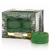 Yankee Candle Velas de Té Aromáticas, Neblina Incesante, Colección Alpine...