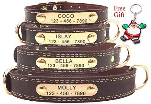 Premium-Hundehalsband aus Leder, mit graviertem Namensschild, personalisierbar, weiche Haptik, strapazierfähiges Echtleder, verstellbar, perfekt für kleine, mittelgroße, große Hunde