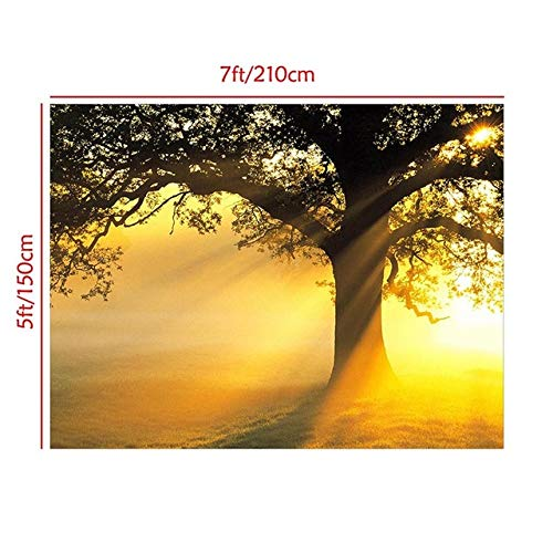 Qingsb 1 set natuur landschap fotografie achtergrond doek 7 * 5ft / 5 * 3ft foto doek fotografische achtergronden voor camera studio, 7x5voeten