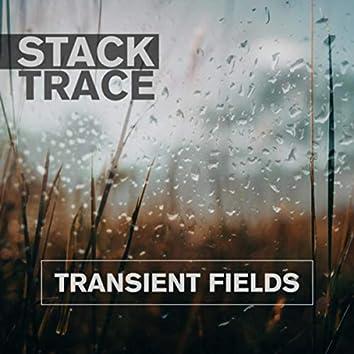 Transient Fields