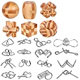 YGZN Metal Wire Puzzle Set de 16, Metal Puzzles Educativos Niños y Adolescentes Juguetes Educativos (Wooden&Metal Puzzles 22pcs)