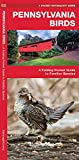 Pennsylvania Birds: A Folding Pocket Guide to Familiar Species (Wildlife and Nature Identification)