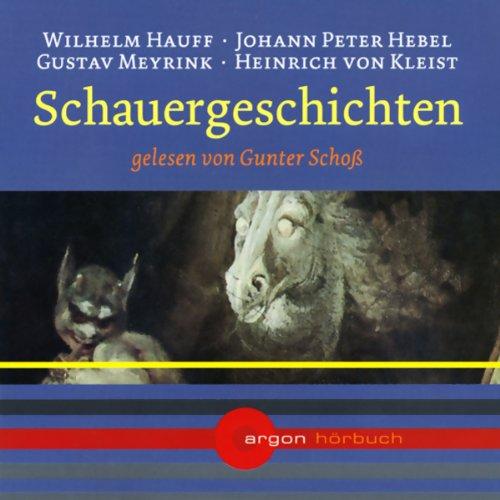 Schauergeschichten audiobook cover art
