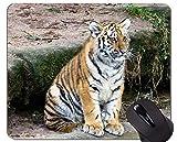 Mousepad Grande de Tigre Blanco, Alfombrillas de ratón de Animales con Bordes cosidos