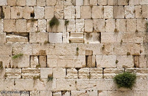 15-Feet Wide by 10-Feet high. Prepasted Wallpaper Mural from a Photo of The: Wailing Wall, Jerusalem. Easy to Hang Remove and Reuse(Hang Again) if U do as in Our Demo Video. 162