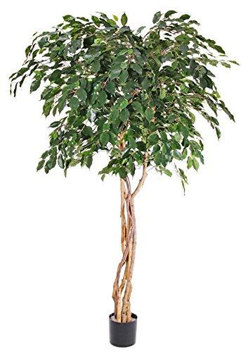artplants.de Ficus Benjamina sintético Micah, Troncos Naturales, Verde, 180cm - Ficus Artificial - Árbol Textil