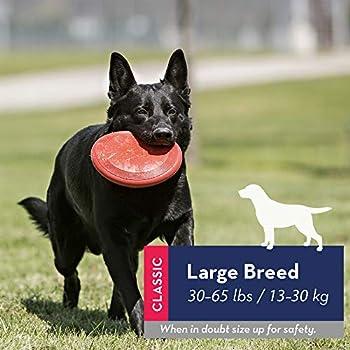 KONG - Flyer - Disque à lancer en caoutchouc résistant pour chien - Pour Grands Chiens