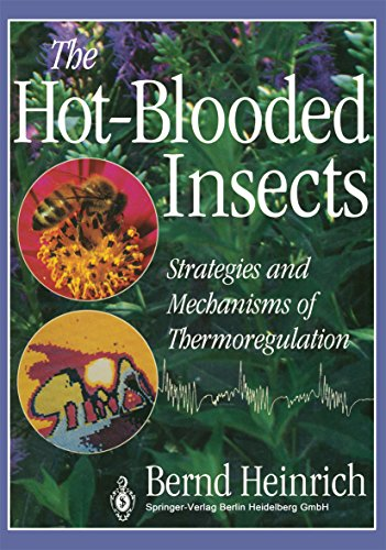 The Hot-Blooded Insects: Strategies and Mechanisms of Thermoregulation (English Edition)
