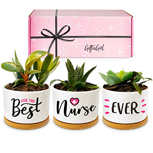 GIFTAGIRL Popular Nurse Gifts for Women - Our Beautiful Best Nurse Ever Succulent Pots are Ideal Gifts for Nurses Female, Nursing Student Gifts for Women, or a Very Memorable Nurse Graduation Gift