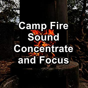 Camp Fire Sound Concentrate and Focus