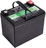 Interstate Batteries 12V 35AH Sealed Lead Acid (SLA) AGM Deep Cycle Battery (DCM0035) Insert...