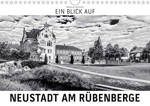 Ein Blick auf Neustadt am Rübenberge (Wandkalender 2021 DIN A4 quer)
